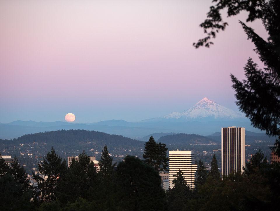 22 things to do around Portland: Rose City Comic Con, Mark