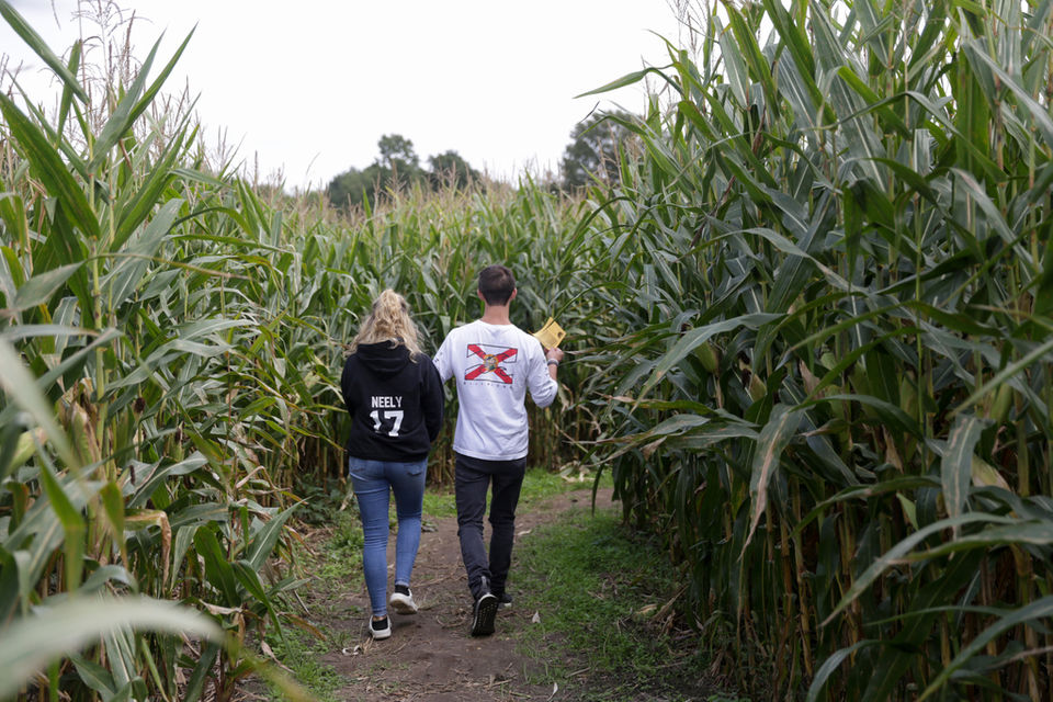Maple syrup, music and mazes: 5 things to do in the Ann Arbor area on this final summer weekend