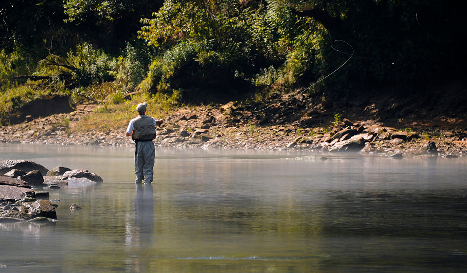 3,500 rainbow trout stocked in the Sipsey Fork below Smith