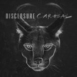 "Disclosure - ""Caracal"""