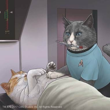 """Star Trek Cats"", interior illustration"