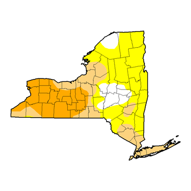 Nearly one quarter of New York is now in a severe drought (burnt orange color on this map.) Tan represents moderate drought, and yellow is abnormally dry. White areas are normal.