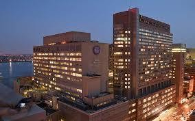Which NY hospitals are rated best by U S  News & World Report