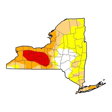 The area of New York state considered in extreme drought (red) has doubled from last week. Orange represents severe drought; tan is moderate; yellow is abnormally dry.