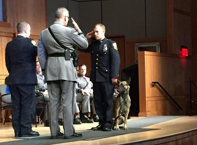 Meet New York's newest State Police dogs