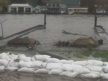 Sandbags on Olcott resident Mark Cassidy's yard on the side facing the creek on the back and side of his house.