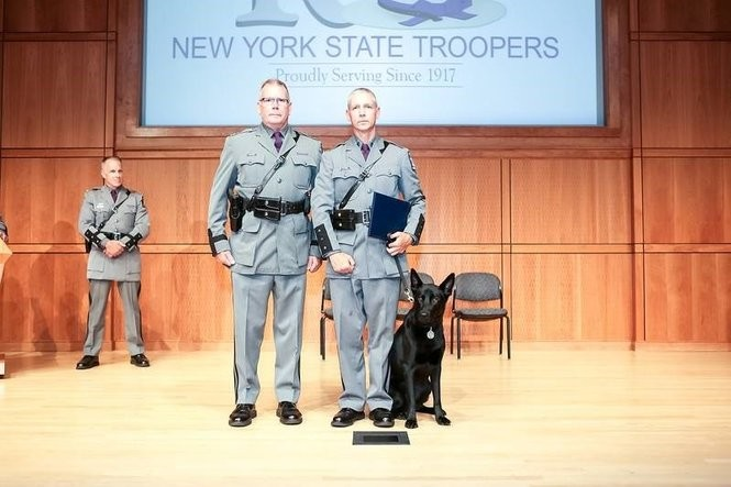 Meet the 15 newest New York State Police dogs, their