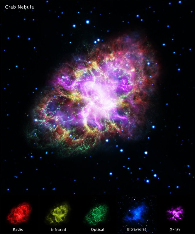 The Crab Nebula at various wavelengths, each showing tremendous detail and information about what lies within.