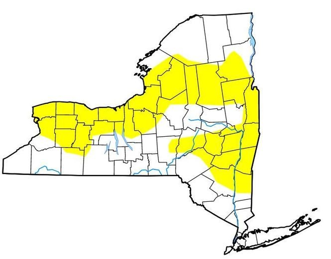 """About half of New York -- the area highlighted in yellow -- is considered """"abnormally dry."""""""