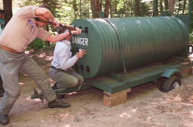 In this 1995 photo, A DEC staff member gets ready to hit a trapped bear with a tranquilizer dart on a trapped black bear while his cohort shines a flashlight on the animal.
