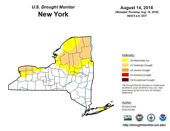 About 20 percent of New York state remains in a moderate drought.