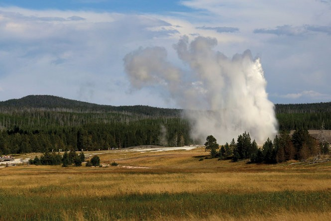 Old Faithful's eruption, as seen from a distance.