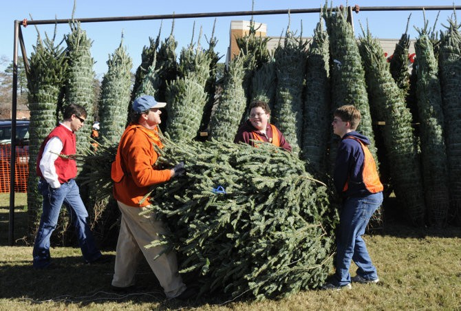 Lowes Christmas Trees 2021 Lowe S All Live Christmas Trees 75 Off Prices Start At 5 Al Com