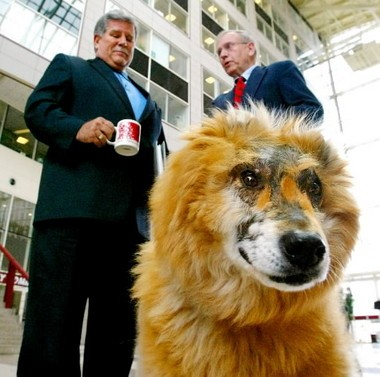 Gucci in 2004 with his owner Doug James and Mobile Mayor Mike Dow. (Mike Kittrell/mkittrell@al.com)