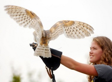 Meghan Sparkman holds a barn owl as it spreads its wings during a demonstration by the Southeastern Raptor Center at Auburn University at the Huntsville Botanical Garden in 2012. The center will present two shows at the garden on March 27. (File photo)