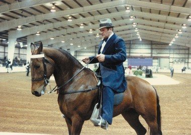 The second-largest annual Racking Horse Show in the country will be April 24-27 at the Morgan County Celebration Arena. (Contributed by the Decatur Convention and Visitors Bureau)