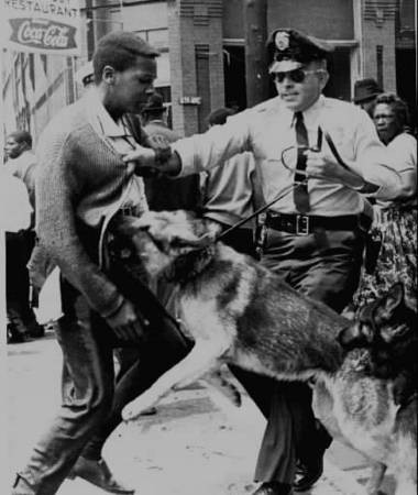 This famous photo of a youth being attacked by a police dog in Birmingham became a source of controversy in 2003 when Michael Dizaar of Los Angeles claimed it was him. Local activist Ronald Jackson said that it was Walter Gadsden, who was a student at Ullman High School in 1963. (AP photo)