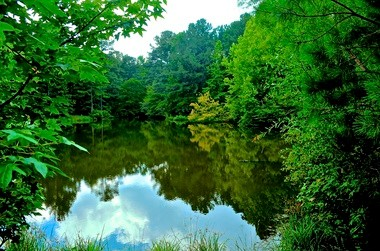 North Shelby County Lake (Boris Datnow)