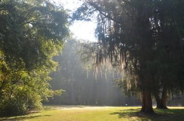 Lanark Nature Center, Millbrook, Alabama (Boris Datnow)