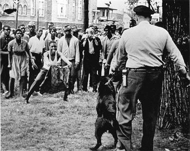 In this photo taken May 3, 1963, a demonstrator taunts a police dog. Walter Lee Fowlkes, who was arrested that day, described himself to family as taunting the dogs like a matador. (AP)