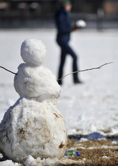 Snowmen love to eat them.
