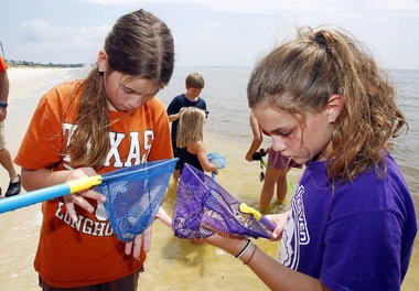 Children and adults explore the beach, dunes and maritime forest during an interactive summer excursion offered by the Dauphin Island Sea Lab on Tuesday, July 30, 2013, in Dauphin Island, Ala. Liz Reed, 11, left, and Miranda Simon, 11, both of Austin, Texas, check for sea creatures in their dip nets. (Mike Kittrell/mkittrell@al.com)