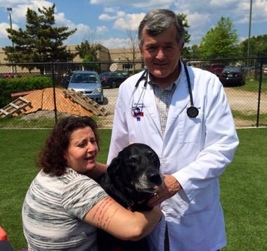 Tasha, a 13-year-old Labrador retriever, was one of the first pets to undergo stem cell therapy at Whitesburg Animal Hospital in Huntsville. She is pictured here with owner Katherine Levine and veterinarian Dr. Mark Russell. (Steve Doyle | sdoyle@al.com)
