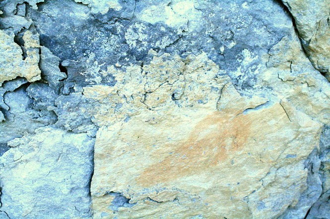 The pictographs on Painted Bluff on the Tennessee River in Marshall County include this catfish. This drawing shows natural weathering that has impacted the drawings after more than 600 years. (Contributed by TVA)