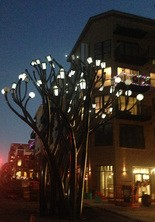 The Light Tree temporarily was lit during the Huntsville Christmas Parade earlier this month