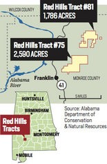 A group of scientists believe the Red Hills region, which surrounds the town of Monroeville in central Alabama, represents a biological oasis unlike anything remaining in North America, with perhaps dozens of unknown species ranging from ants and spiders to wasps, salamanders and plants. (AL.com)