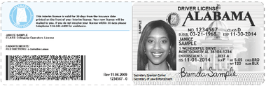 Alabama residents will need to print out their temporary ID after renewing their driver license online. A new permanent ID will be mailed out within 30 days. Kiosks are available in 10 driver license offices, in the more urban areas across the state, for those who don't have access to Internet or a printer. (ALEA)