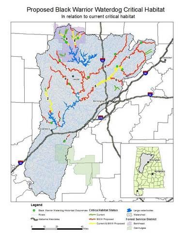 A map of proposed critical habitat for the Black Warrior waterdog, a salamander which has been proposed for protection under the Endangered Species Act. (U.S. Fish and Wildlife Service)