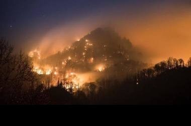 Dry conditions and high winds caused a wildfire on Chimney Tops Trail in the Great Smoky Mountains to spread quickly. (Contributed photo/Tennessee State Troopers)