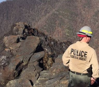 Investigative Services Branch Special Agents are working with agents of the Bureau of Alcohol, Tobacco, Firearms, and Explosives to investigate the origin of the Chimney Tops 2 Fire in Great Smoky Mountains National Park The fire near the second summit on Chimney Tops appears to be human-caused. (Contributed photo/National Park Service)