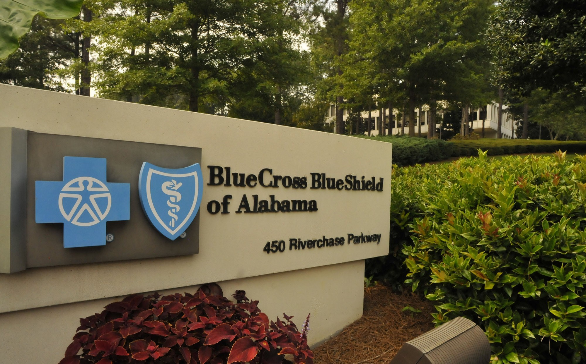 Blue Cross of Alabama predicts $135 million loss in 2015, mostly due