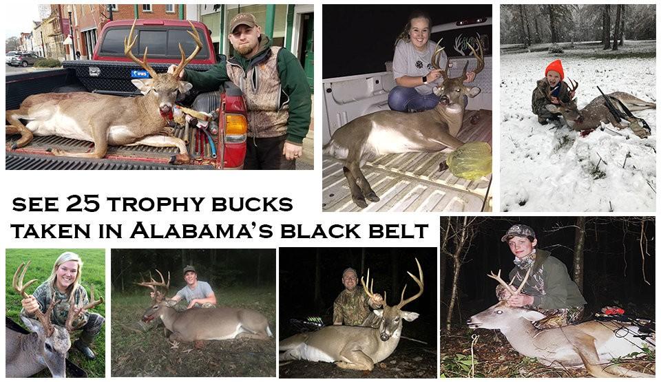 Hunters show off trophy bucks entered in Alabama Black Belt 'Big