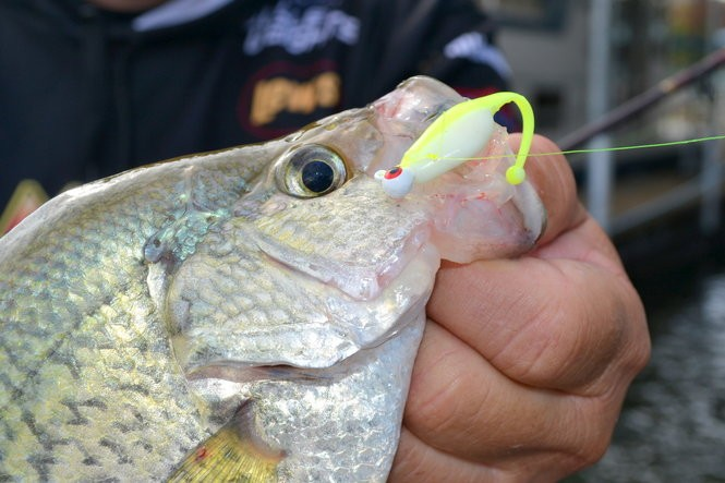 Tiny crappie jigs are highly effective trolling lures for locating crappies in deep water in winter.