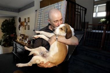 Joe Dwyer plays with Daniel, a beagle that survived an Alabama gas chamber. (AP Photo/Julio Cortez)