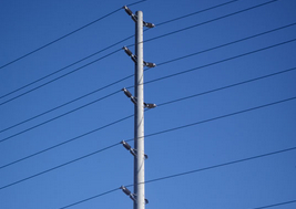 The firm makes concrete utility and decorative poles.