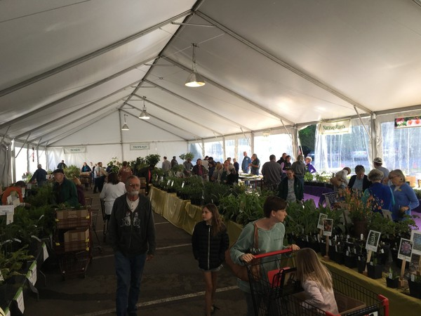 Friends of Birmingham Botanical Gardens' largest annual plant sale fundraiser will be held at Brookwood Village in Birmingham, Ala. on April 13-15. Over 100,000 plants will be available for purchase, many of which have been nurtured by volunteers at The Gardens. More than 7,000 plant enthusiasts attended last year's sale.