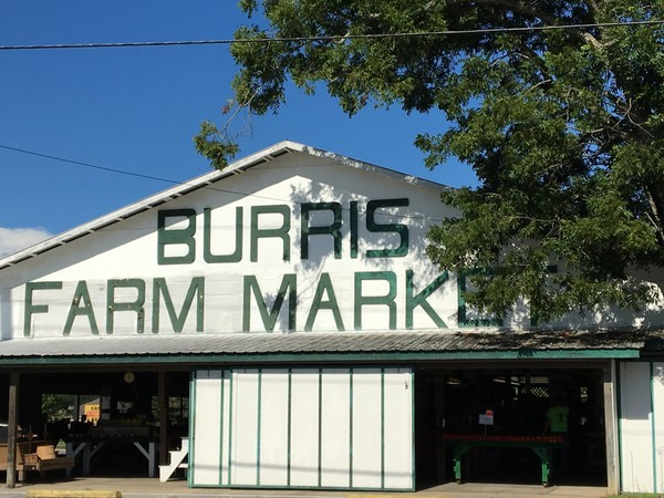 Burris Farm Market in Loxley, Ala., will close on Sunday, Aug. 12, 2018. But the market's original owner, Greg Burris, plans to reopen it this fall. The market is a popular destination for beach bound travelers who take Alabama State Route 59 to Baldwin County's beaches. (John Sharp/jsharp@al.com).