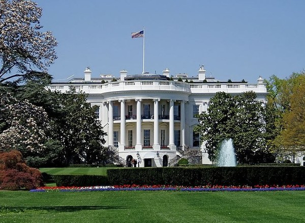 Iconic 200 Year Old White House Tree To Be Removed Alcom