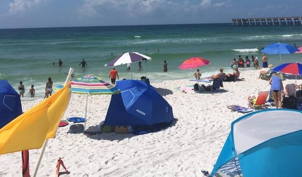 Sea lice on Florida beaches: Updated conditions in Pensacola, Panama