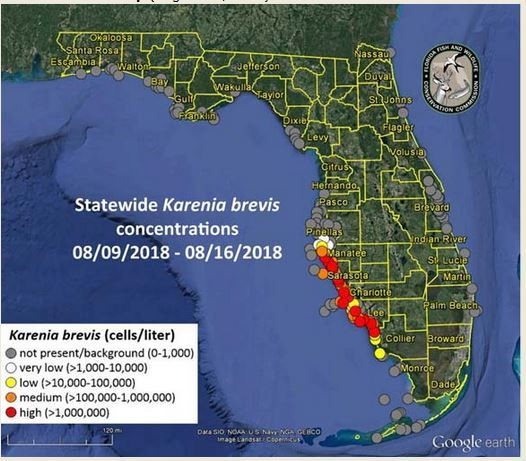 The Florida Fish and Wildlife Commission's latest map showing outbreak of red tide.
