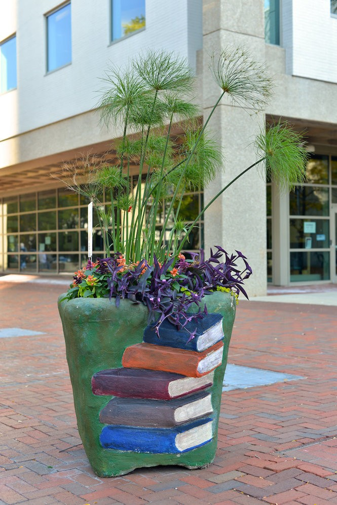 Organizations like the Akron-Summit County Public Library at 60 S. High St. don't have to worry about upkeep. Downtown Akron Partnership ambassadors water and fertilize the planters during the growing season.