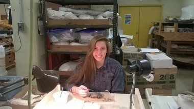 Rachel Matonis at her work station at the Cleveland Museum of Natural History.