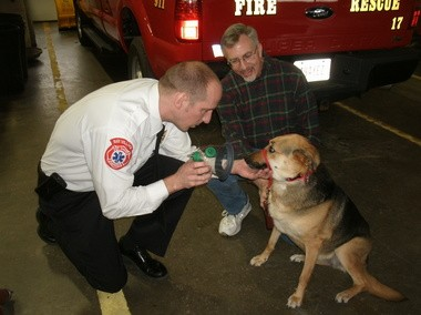 Bay Village Fire Chief Chris Lyons demonstrates how the oxygen masks would be applied using John Glasmire's dog Glory for the demonstration. Glasmire is one member of the Friends of the Bay Village Animal Kennel, which donated the masks.