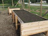 The Greene Acres Community Garden in Broadview Heights added stand up plots this season.