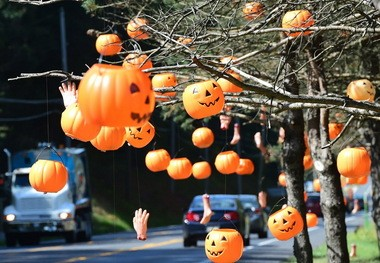Plastic jack-o-lanterns decorate trees in front of Mister Ed's Elephant Museum & Candy Shop in Orrtanna, Pennsylvania. 47 percent of Americans will decorate their homes and yards for Halloween.