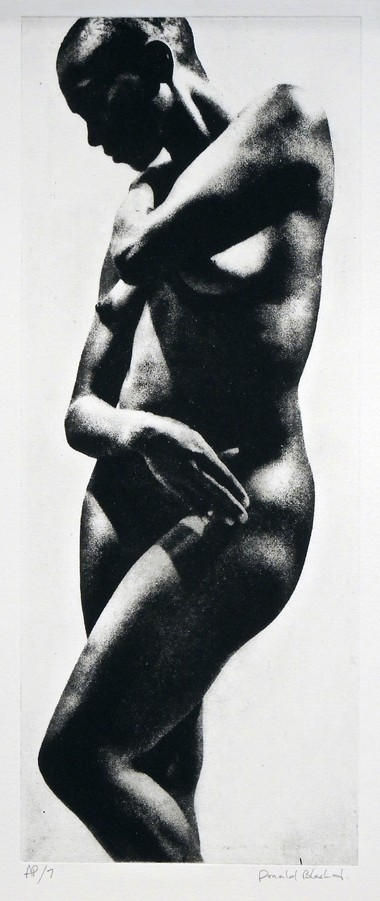Donald Black Jr.'s image of a female nude with arms crossed recalls classic poses used to depict Venus and Eve.